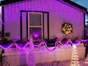 lights at front, Christmas decorations
